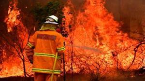 ۴۰ تن جو و کاه در روستای نوده آتش گرفت