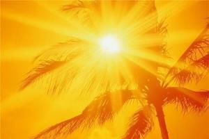دمای هوای استان بوشهر تا پایان هفته روند افزایشی خواهد داشت
