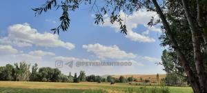 نمایی زیبا از طبیعت سرسبز روستای وظیفه خوران هشترود