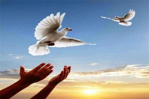 آزادی ۷۲ زندانی در تبریز
