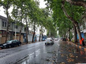 طراوت هوای بهاری در تابستان گیلان