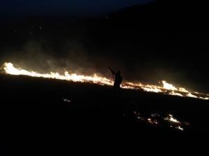 آتش به جان طبیعت رکنآباد شیراز افتاد