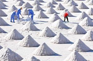 بیل زدن کارگران در حوضچه های نمک