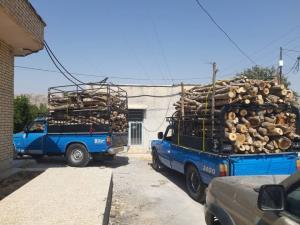 توقیف ۳ محموله قاچاق چوب در باشت