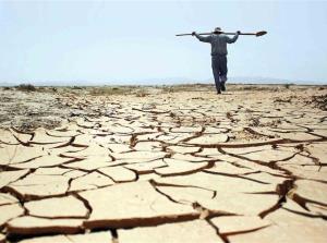 پاییز بوشهر با کاهش ۵۰ درصدی بارش میرسد