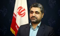 گلایه نماینده مردم نهبندان از مافیای واردات نهادههای دامی
