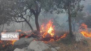 ۸۰ درصد آتشسوزی کوه نور چرام تحت کنترل است