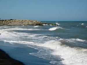 سواحل بوشهر تا جمعه مواج است