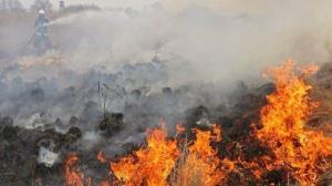 آتش سوزی در کوه «نیر» بویراحمد همچنان ادامه دارد