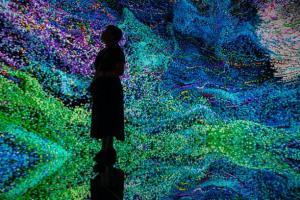 تصاویری از «نمایشگاه هنرهای دیجیتال آسیا» در هنگ کنگ