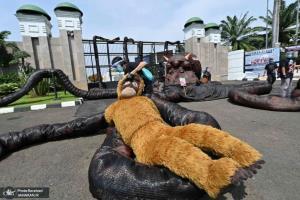 اعتراض یک فعال محیط زیستی در جاکارتا