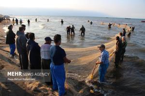 عکس/ آغاز همت صیادان گیلانی برای کسب روزی از دریا