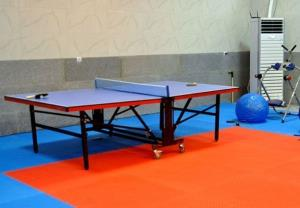 ۳۰ خانه ورزش روستایی در قزوین افتتاح میشود