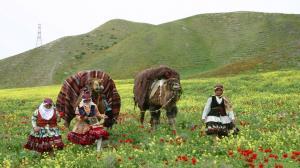 ممنوعیت کوچ زودهنگام عشایر خراسان شمالی
