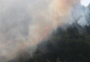 متهمان حادثه آتشسوزی پارک ملی گلستان شناسایی و دستگیر شدند