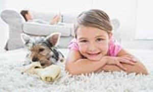 آیا به جای کودک میتوان با سگ و گربه انس گرفت؟