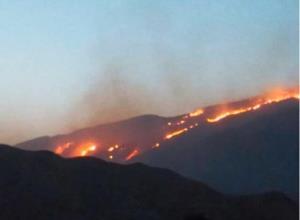 مهار آتشسوزی در بخش ارژن شیراز