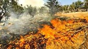 مهار 2 آتش سوزی همزمان در منطقه ارژن و پریشان