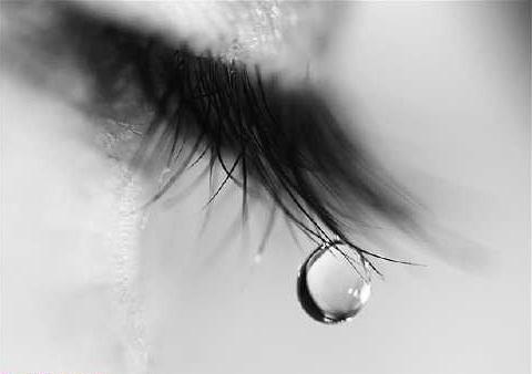 اشک چشمها و نزول رحمت خدا بر جامعه