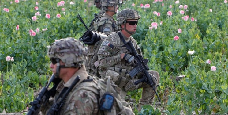 طالبان: آمريکا افغانستان را مزرعه مواد مخدر کرده است