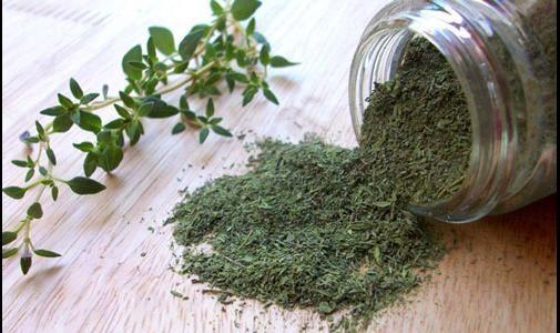 معجزه یک گیاه معطر در درمان کمردرد