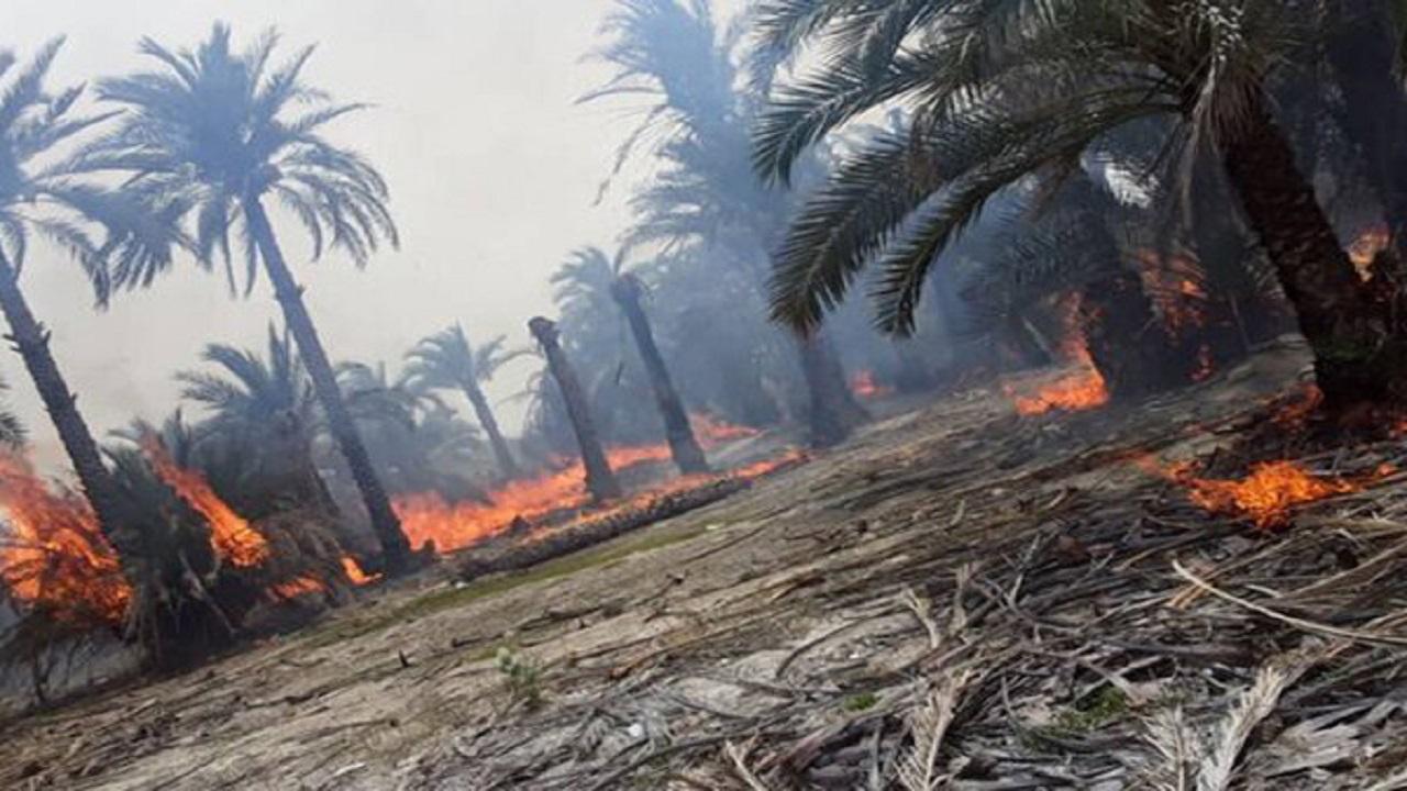 آتشسوزي يک ميليارد تومان به کشاورزان بزماني خسارت وارد کرد