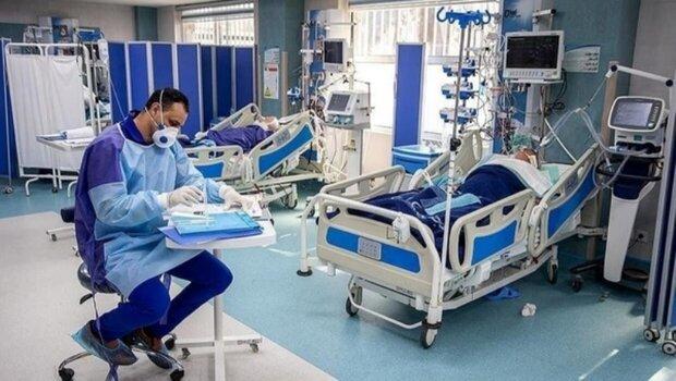 بستری شدن 11 بیمار جدید مبتلا به کرونا در کاشان