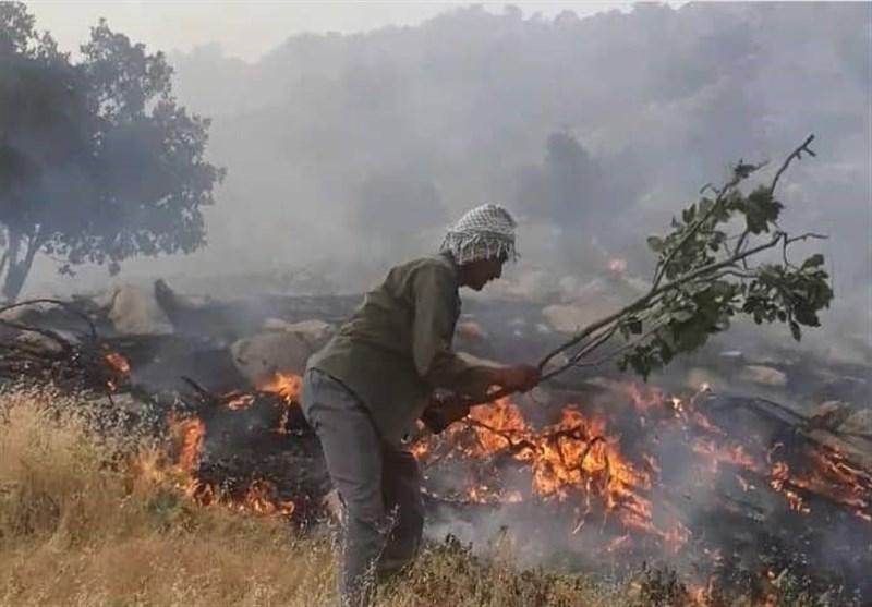 غلبه آتش بر ۹ روز بیبرنامگی مدیریت بحران خوزستان در اطفای حریق کوه دلا