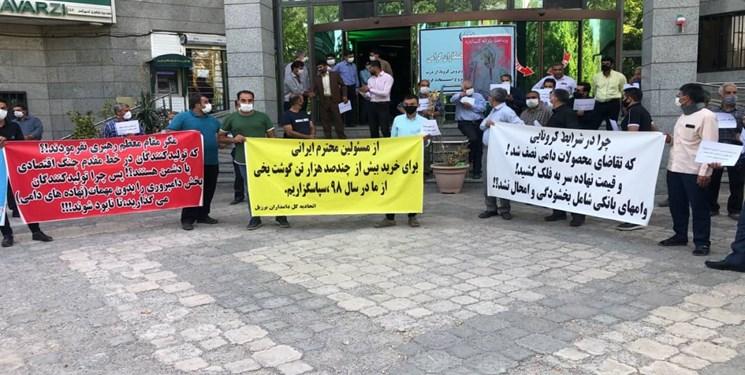 تجمع دامداران مشهد مقابل سازمان جهاد کشاورزي خراسان رضوي