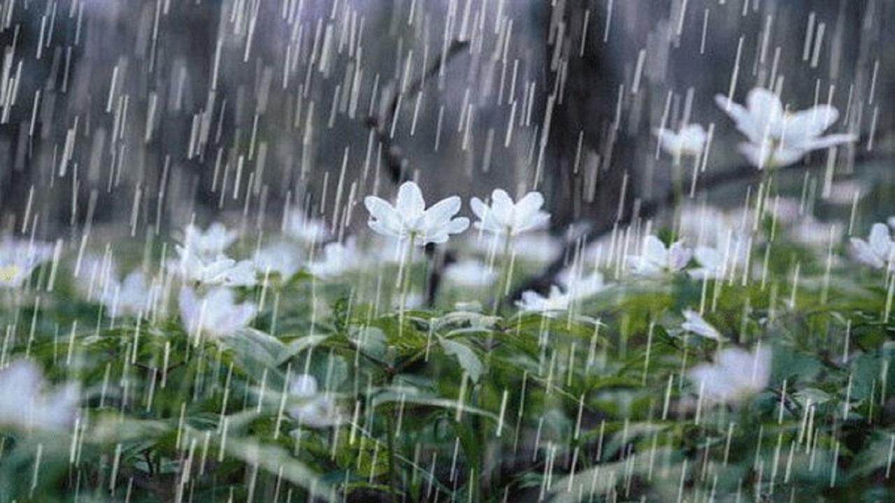 آرین شهر، رکورد دار باران غافلگیرانه در خراسان جنوبی