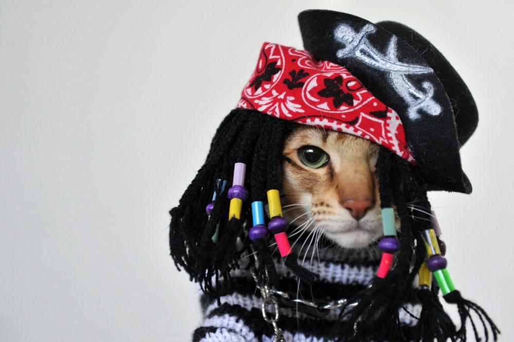 مد لباس گربهای در ووهان چین