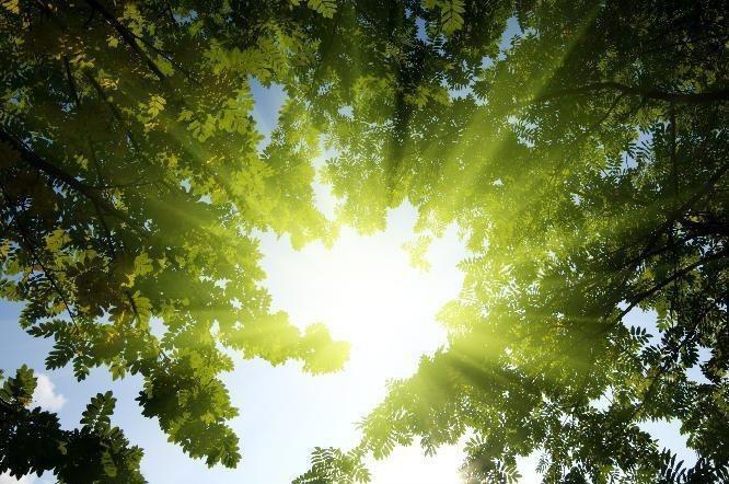 آسمان فارس صاف تا آفتابی