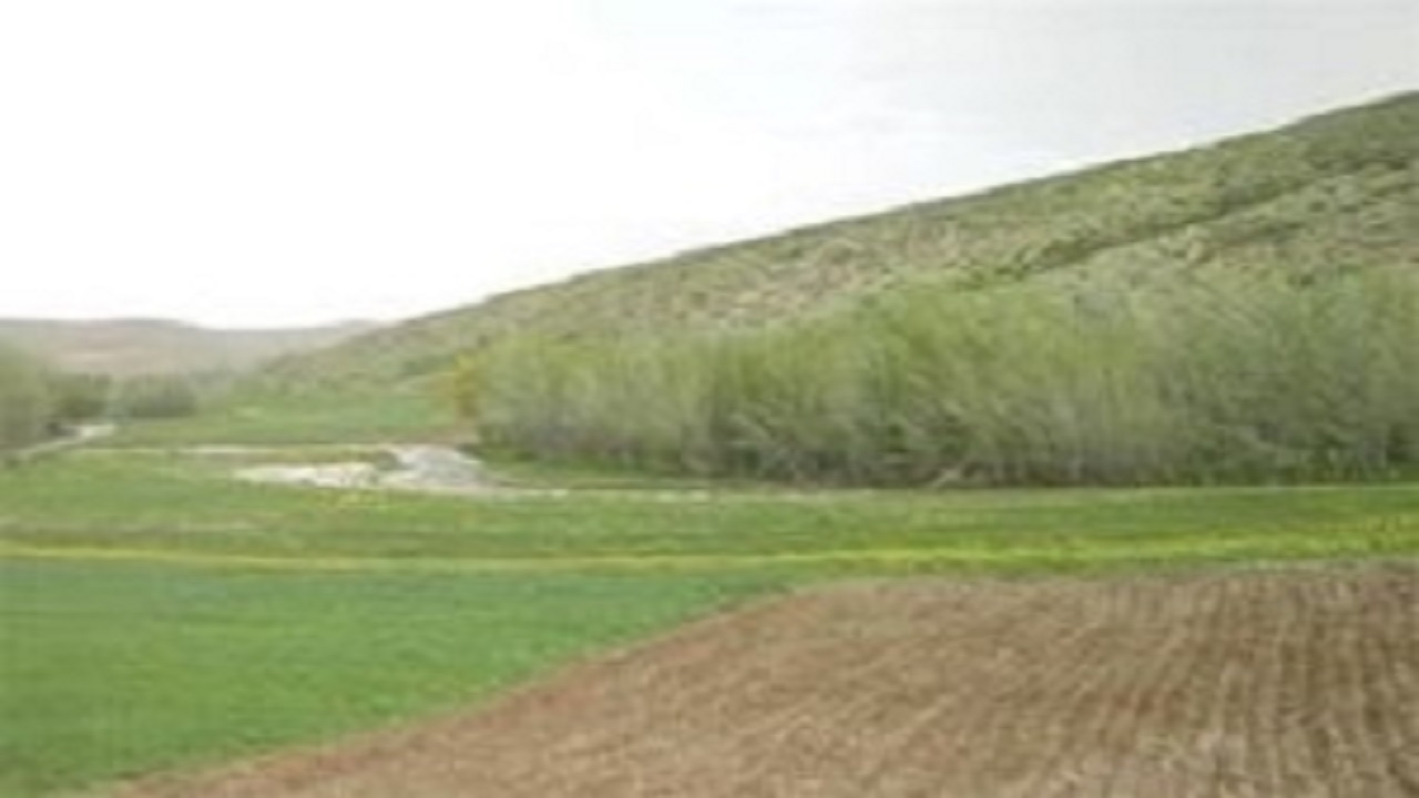رفع تصرف بیش از ۱۴ هزار مترمربع از اراضی ملی سقز