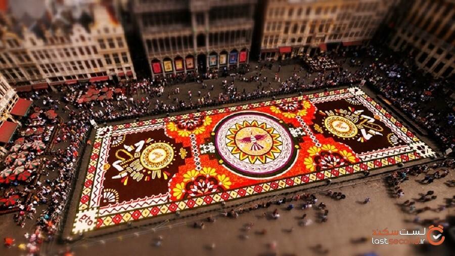 بزرگترین فرش گل دنیا پهن شد!