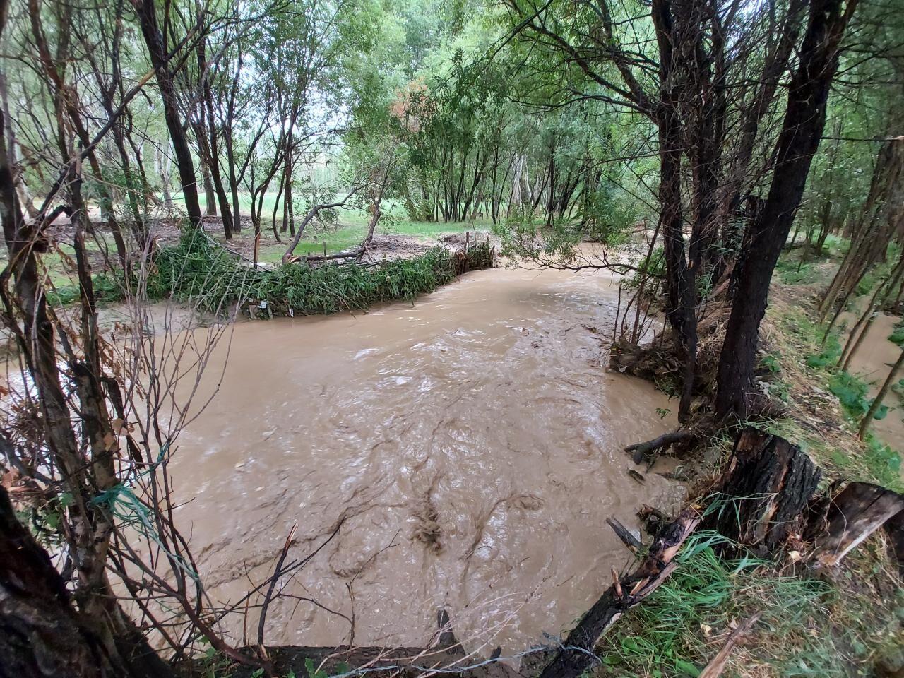 سیل و طوفان ۸۶۳ میلیارد ریال به کشاورزی خلخال خسارت زد