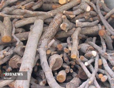 کشف بیش از ۱۰ تن چوب قاچاق