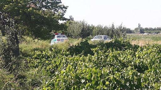 سارق باغهای استان همدان دستگیر شد