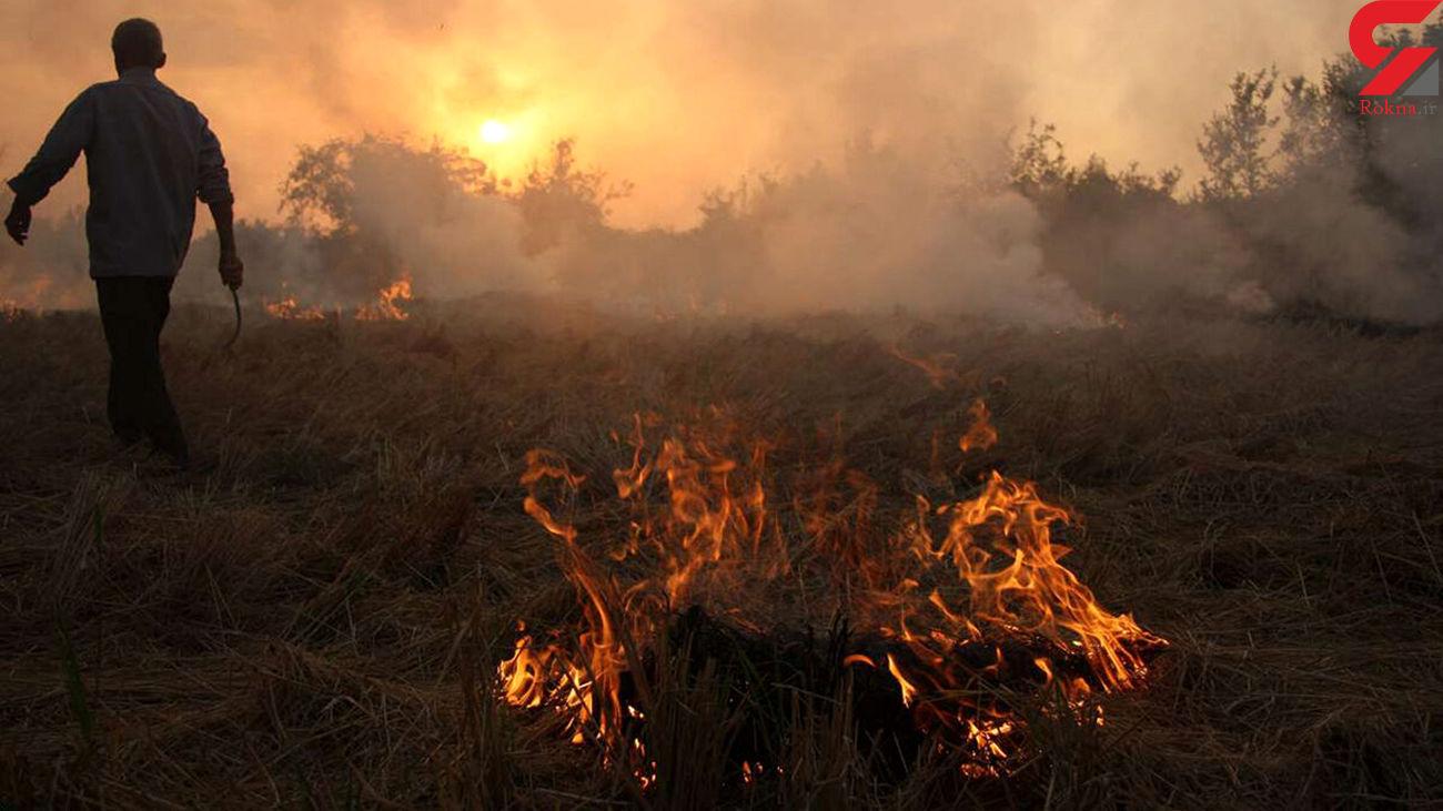 جریمه میلیونی و حبس عاقبت آتش زدن کاه برنج