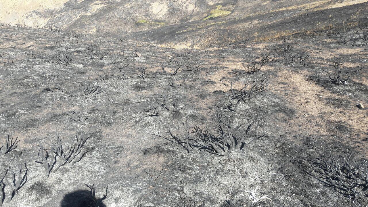 آتش 150 هکتار از مراتع بستانآباد را نابود کرد