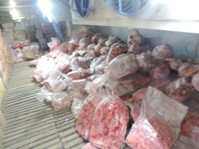 کشف و معدوم سازی بیش از ۱۴۰ کیلو گوشت فاسد در لاهیجان