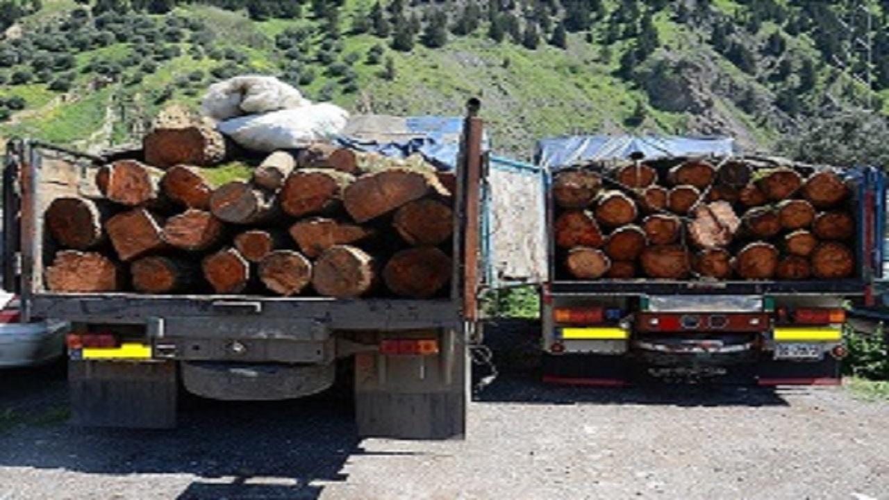 کشف ۲۰ تن چوب قاچاق در سنندج