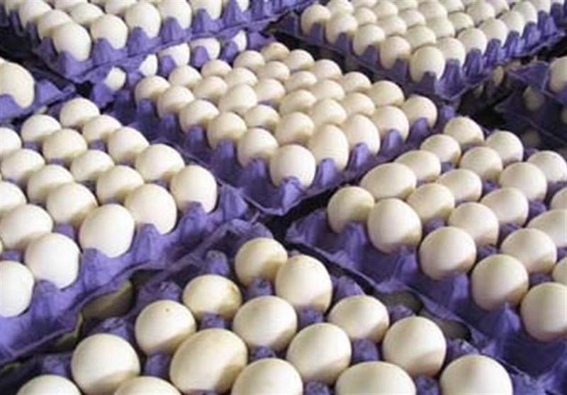 قیمت هر کیلوگرم تخممرغ 14 هزار و 500 تومان تعیین شد