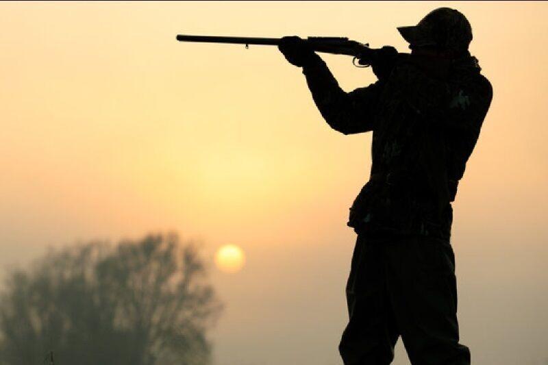 شکارچی غیرمجاز از طریق فضای مجازی دستگیر شد