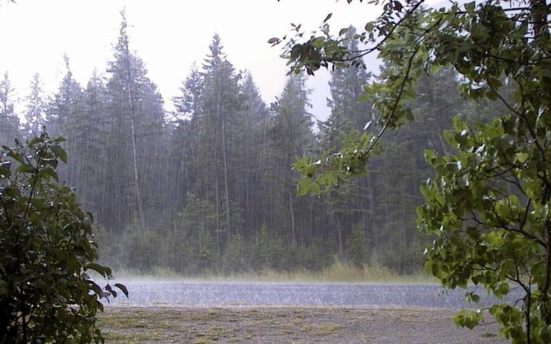 تداوم باران در گیلان