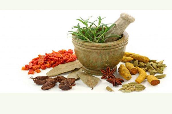تغذیه پاییزی را بشناسیم؛ پرهیز از خوراکیهای خشک کننده بدن