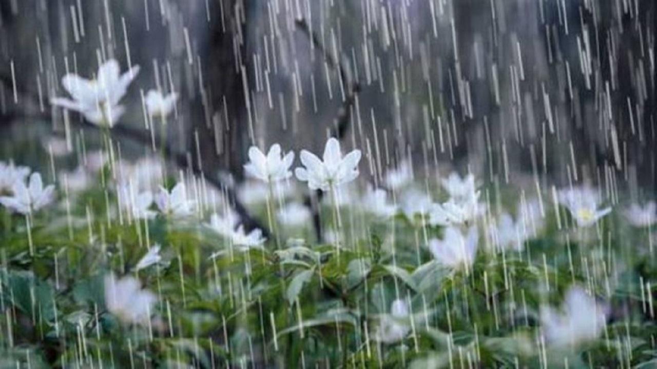 افزایش ۴۵ درصدی بارندگی در خراسان رضوی