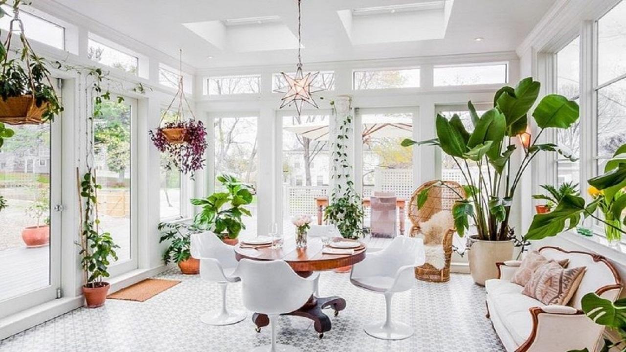 بهترین مکان برای نگهداری گل و گیاه در خانه کجاست؟