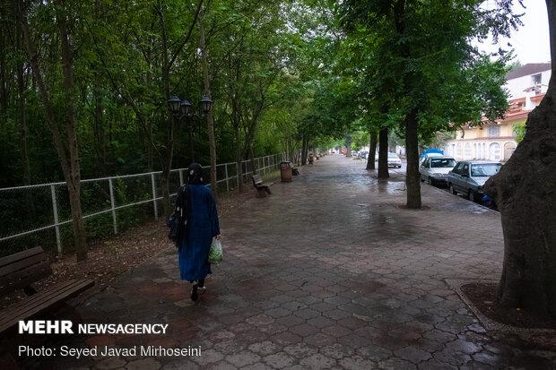 احتمال بارش پراکنده باران در کردستان