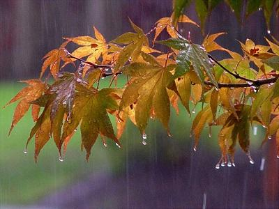 استان همدان تا آخر هفته بارانی است
