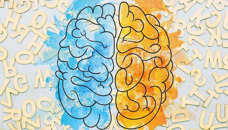 با یادگیری یک زبان جدید، سمت راست مغز را فعال کنید